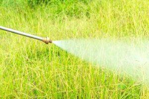 Pesticide Treatment
